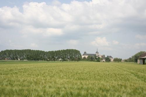 L'église abbatiale vue du bord de Loire, telle qu'elle devait apparaître aux bateliers de Loire.