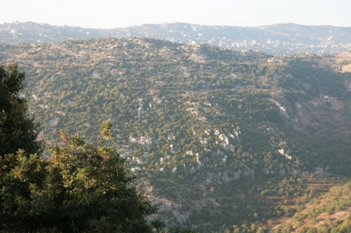 Site rencontre libanaise