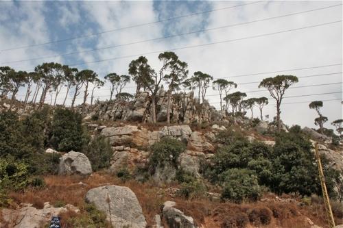 Sur les hauteurs de Kfarakab