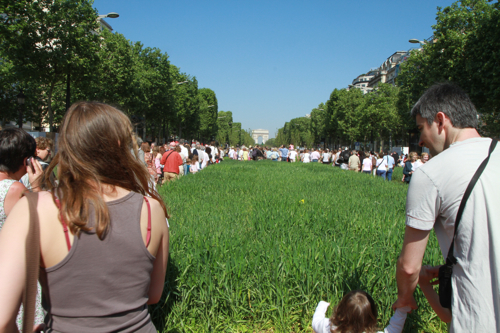 Et le printemps fait reverdire  lLes Champs Elysées