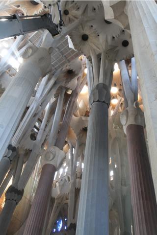 Le vons les yeux, ces piliers sont comme des arbres tenant la voute .
