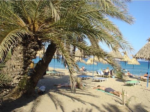 La plage de Vaï, à l'extrème ouest est plus fréquentée..surtout par des touristes attirés par la palmeraie unique en Crète qui borde la plage.