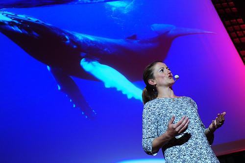 Stéphanie et la baleine qui l'a fait douter de sa place sur l'océan (photo Martin Charpentier)
