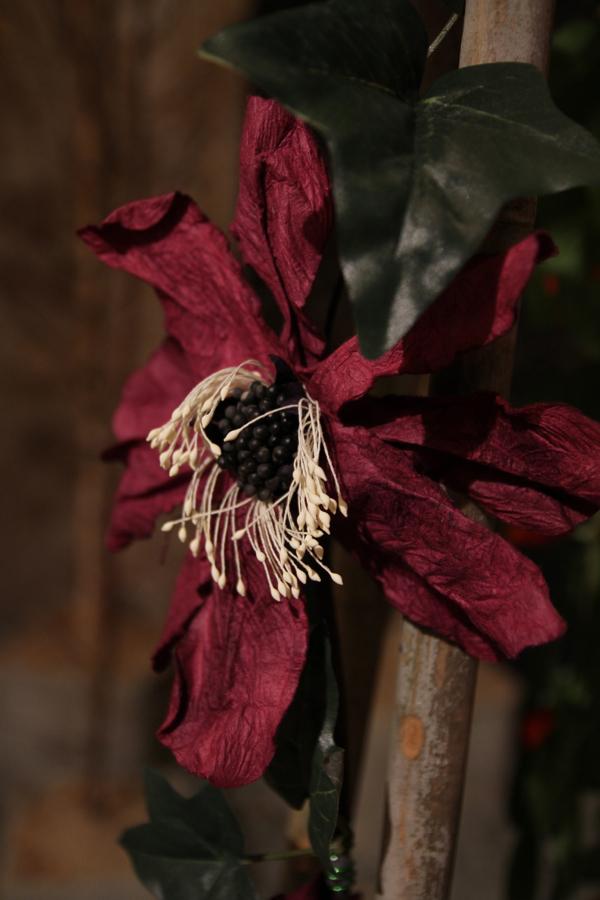 En attendant le printemps détail d'une sculpture installation de fleurs séchées sur fils tendus de Claudy Desserey