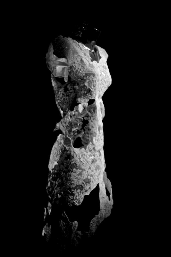Dentelle sculptée, une œuvre  de Marie Wolf d'Orléans qui a reçu le prix coup de coeur des exposants de ce Salon