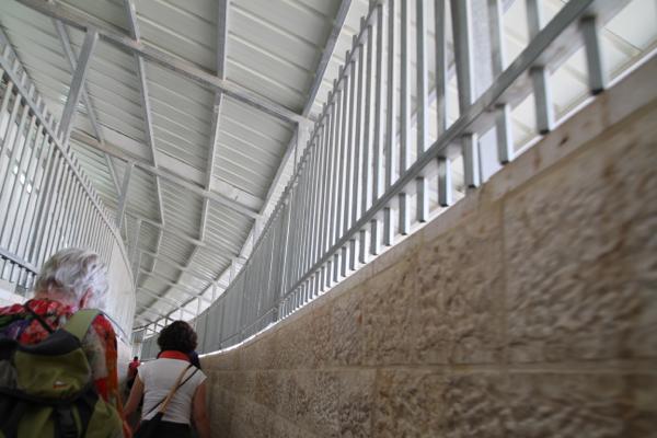 Nous devons suivre un long couloir qui nous fait penser au cheminement des tigres dans les cirques.