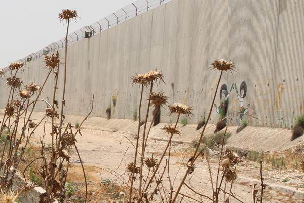 Le mur ...