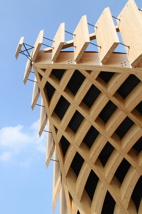 Une cathédrale de bois